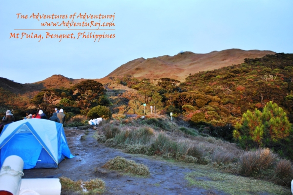 Mt Pulag Camp 2