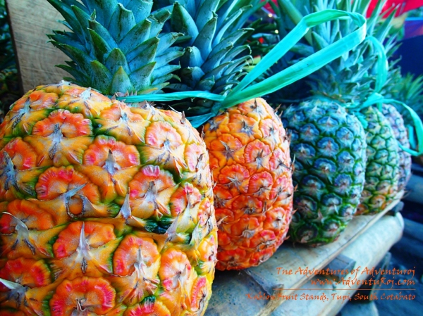 Do you have a sweet tooth? Why not give this pineapples a try!