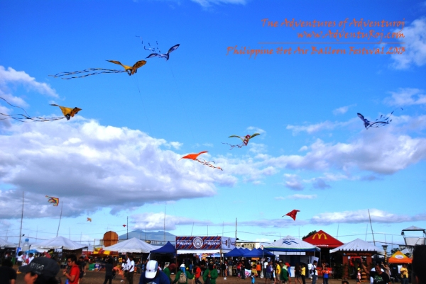 Kite Flying Exhibition (2)