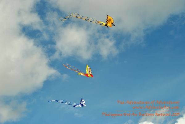 Kite Flying Exhibition (7)