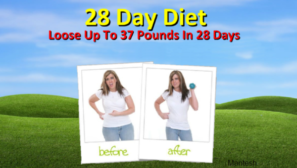 28 Day Diet Plan Loose Up To 37 Pounds In 28 Days ebook